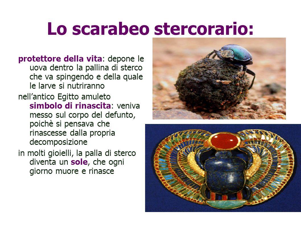 Lo scarabeo stercorario: