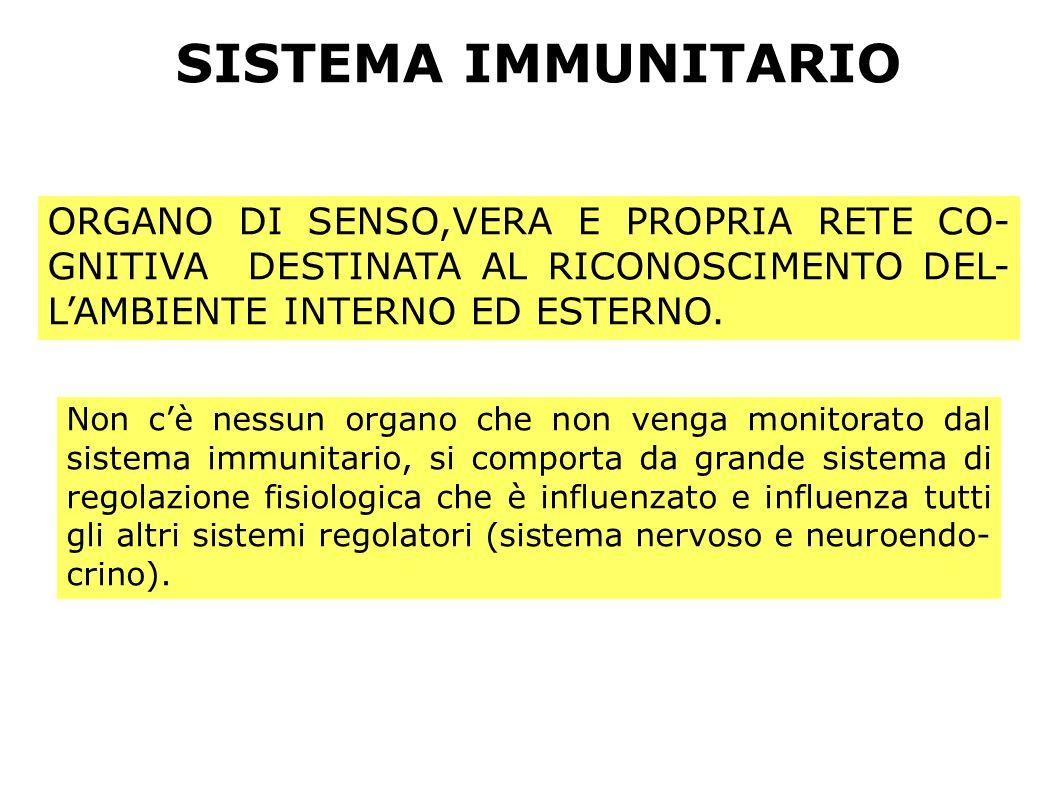 SISTEMA IMMUNITARIO ORGANO DI SENSO,VERA E PROPRIA RETE CO-GNITIVA DESTINATA AL RICONOSCIMENTO DEL-L'AMBIENTE INTERNO ED ESTERNO.