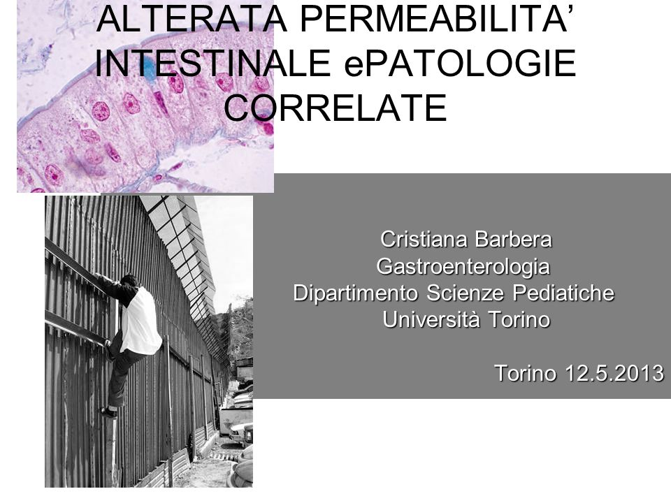 ALTERATA PERMEABILITA' INTESTINALE ePATOLOGIE CORRELATE