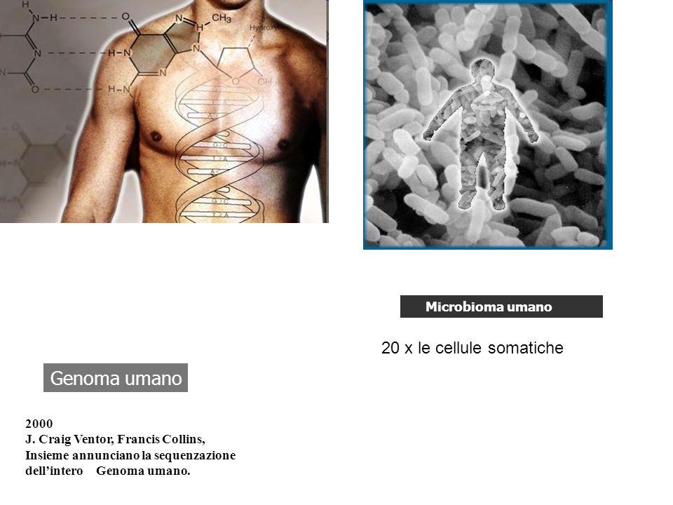 Genoma umano 20 x le cellule somatiche Microbioma umano 2000