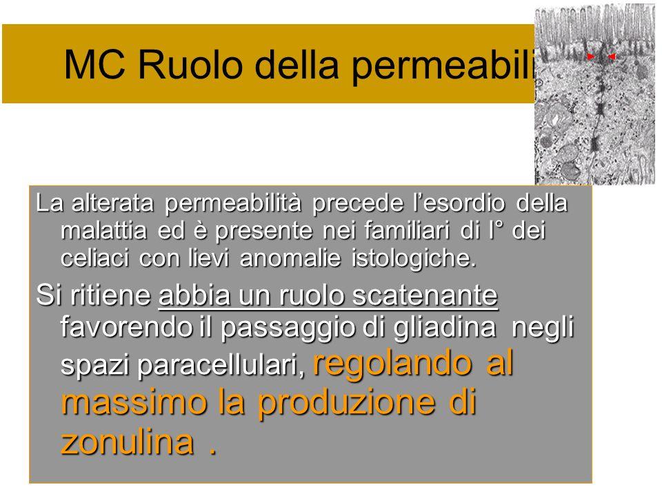 MC Ruolo della permeabilità