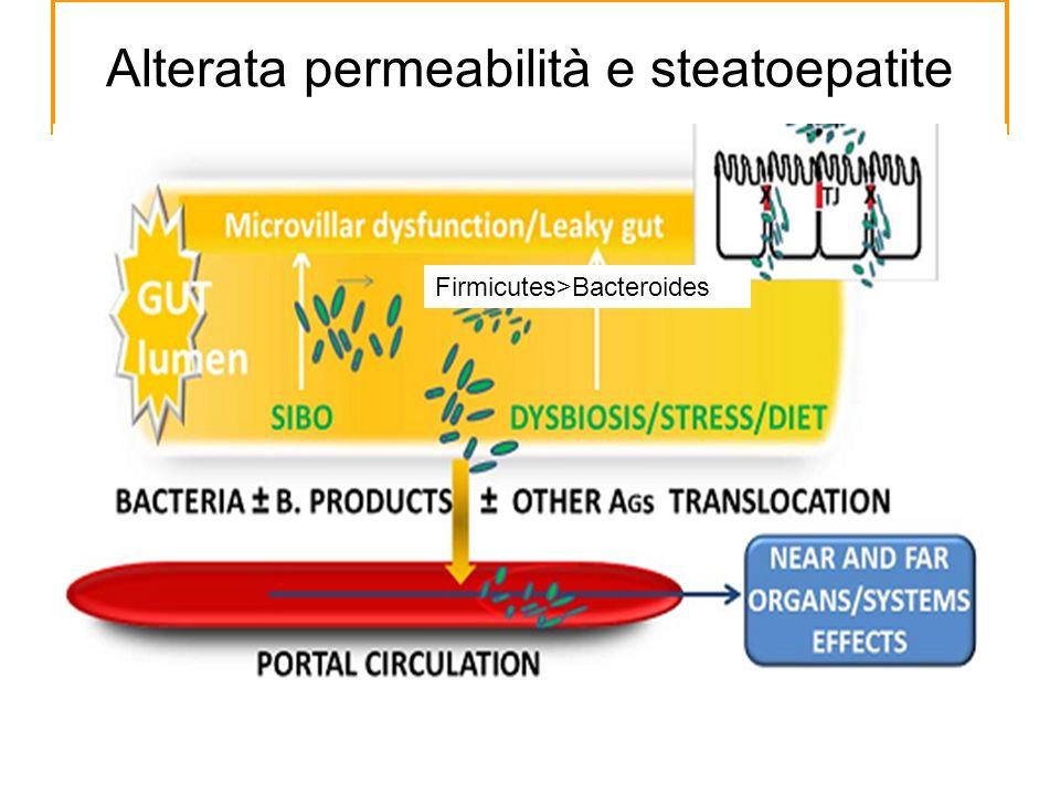 Alterata permeabilità e steatoepatite