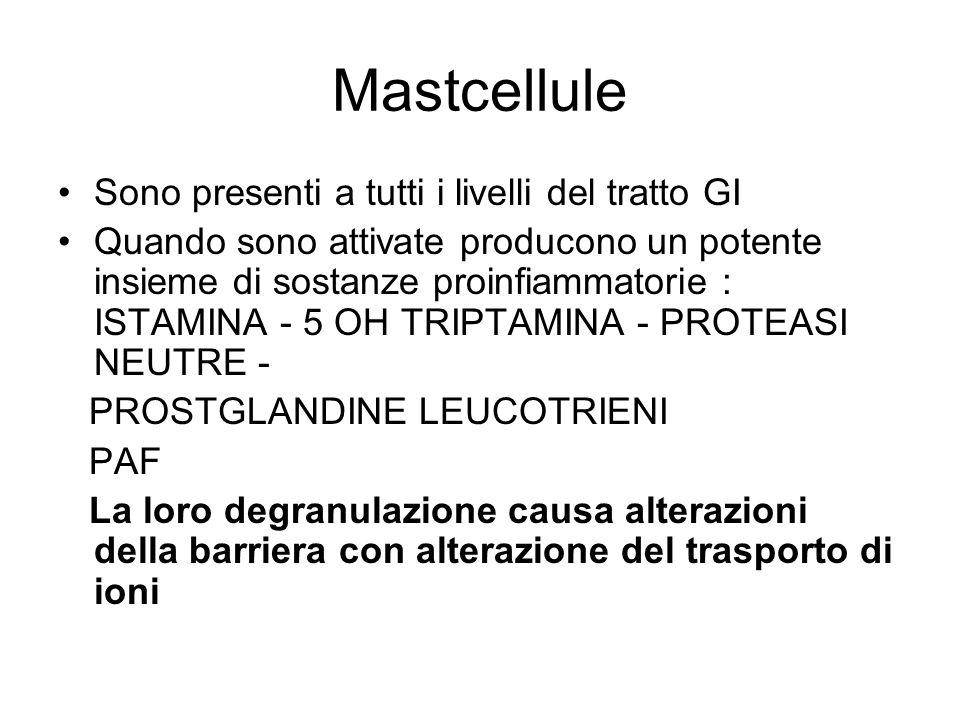 Mastcellule Sono presenti a tutti i livelli del tratto GI