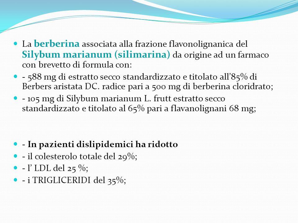 La berberina associata alla frazione flavonolignanica del Silybum marianum (silimarina) da origine ad un farmaco con brevetto di formula con: