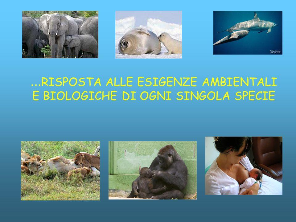 …RISPOSTA ALLE ESIGENZE AMBIENTALI E BIOLOGICHE DI OGNI SINGOLA SPECIE