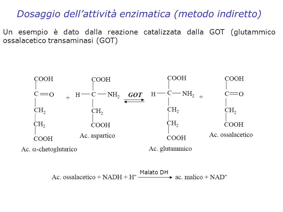 Dosaggio dell'attività enzimatica (metodo indiretto)