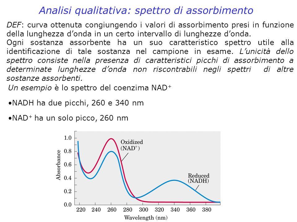 Analisi qualitativa: spettro di assorbimento