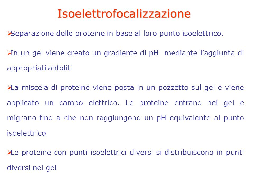 Isoelettrofocalizzazione