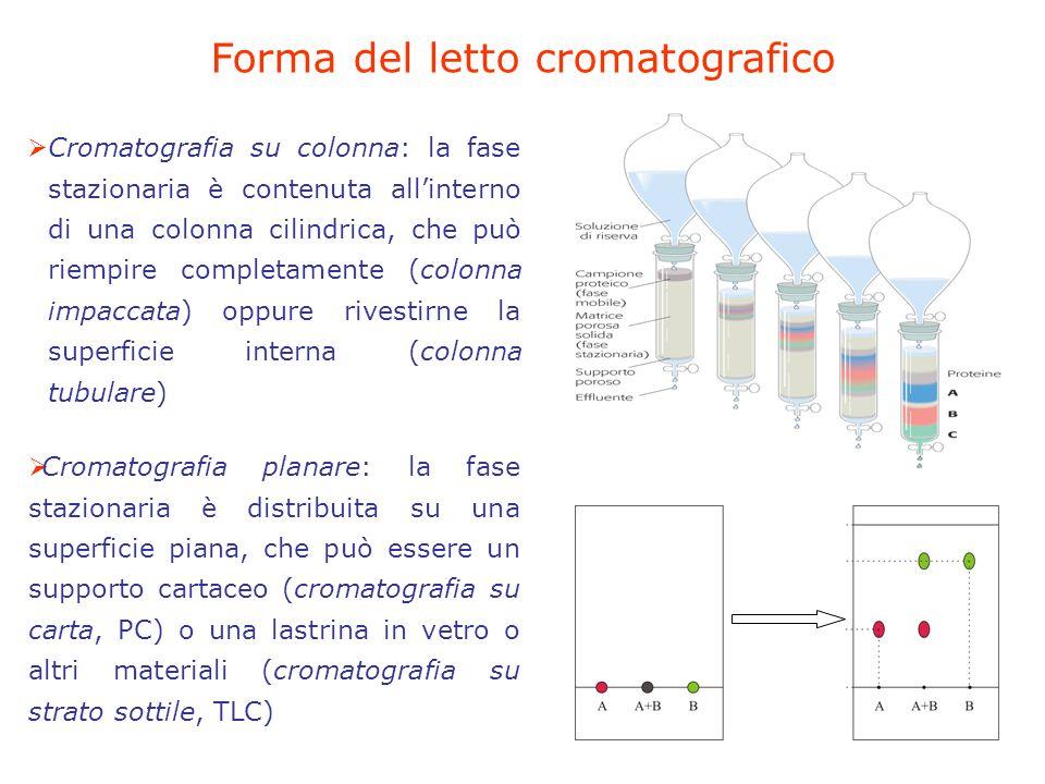 Forma del letto cromatografico