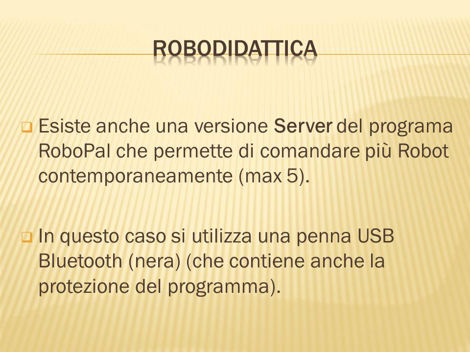 ROBODIDATTICAEsiste anche una versione Server del programa RoboPal che permette di comandare più Robot contemporaneamente (max 5).