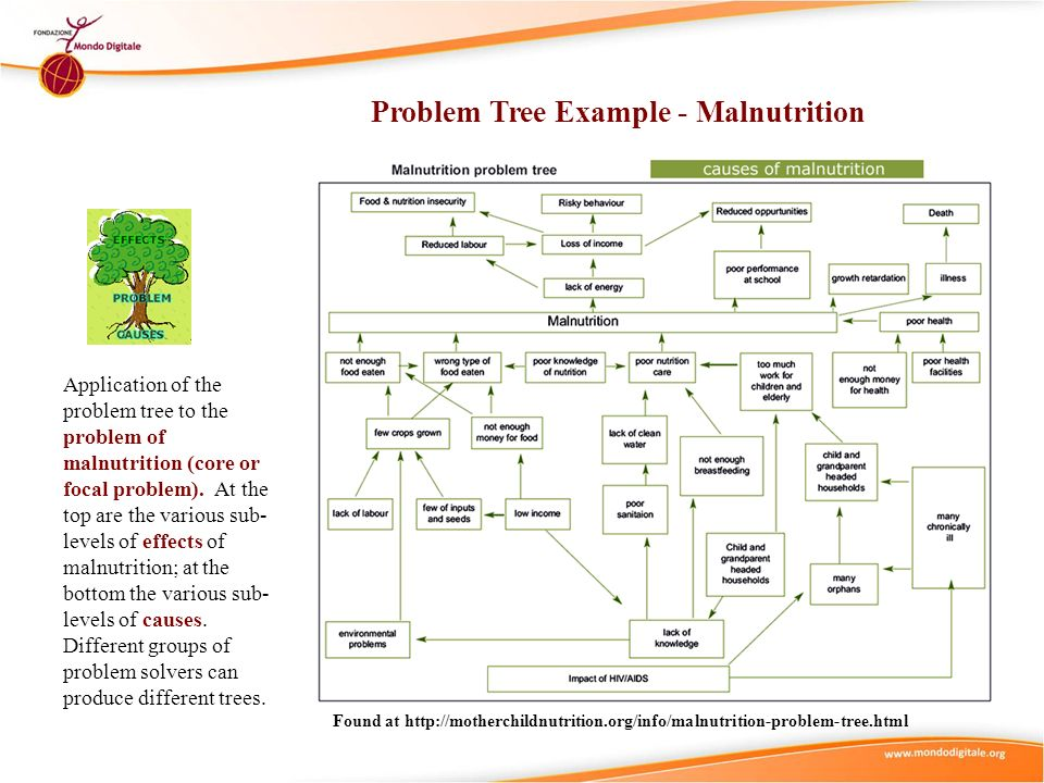 Problem Tree Example - Malnutrition