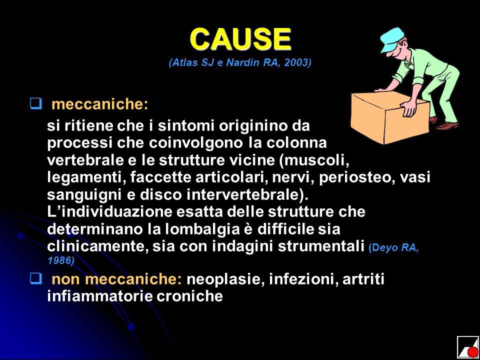 CAUSE (Atlas SJ e Nardin RA, 2003)