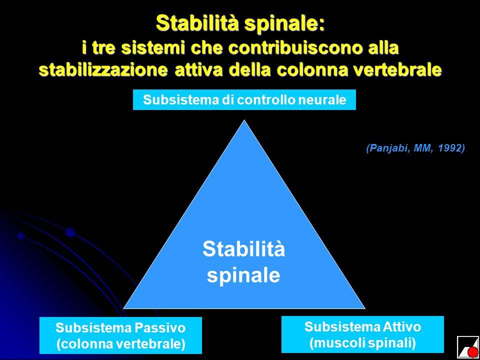 Stabilità spinale: i tre sistemi che contribuiscono alla stabilizzazione attiva della colonna vertebrale