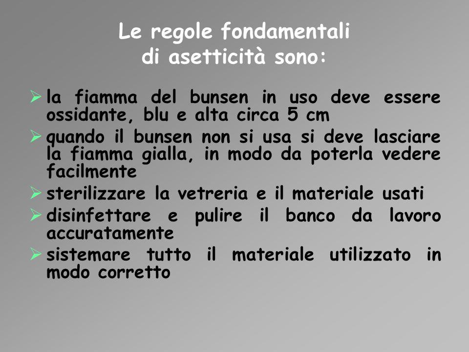 Le regole fondamentali di asetticità sono: