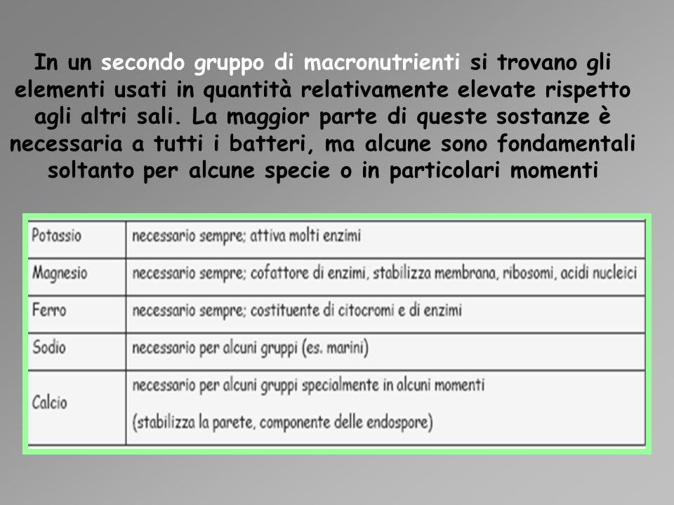 In un secondo gruppo di macronutrienti si trovano gli elementi usati in quantità relativamente elevate rispetto agli altri sali.
