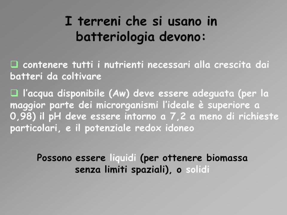 I terreni che si usano in batteriologia devono: