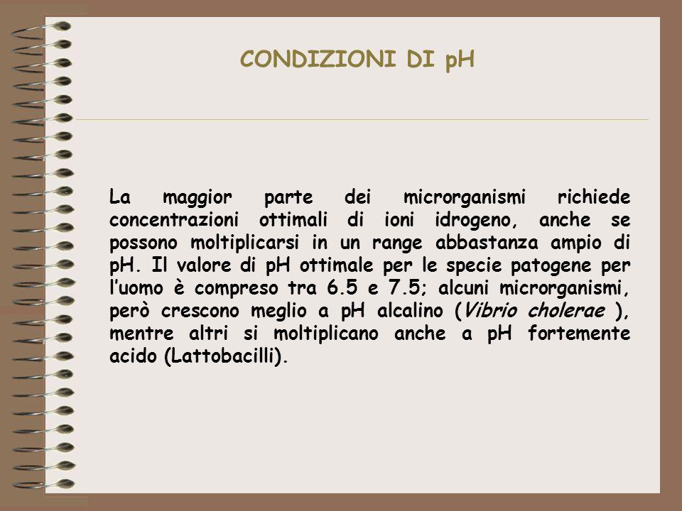 CONDIZIONI DI pH