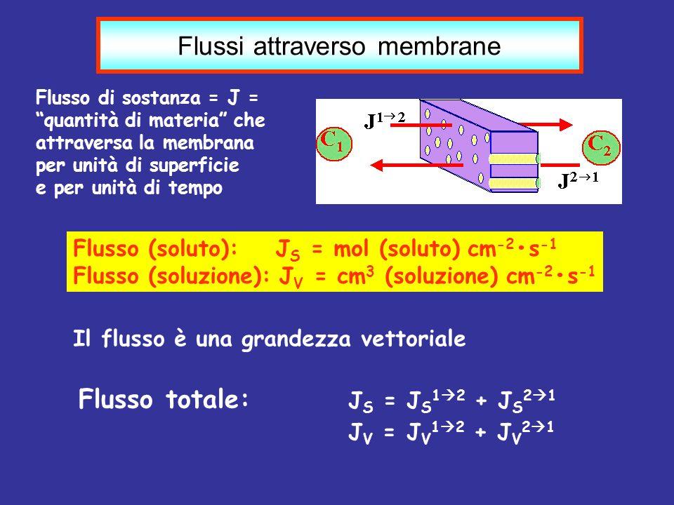 Flussi attraverso membrane