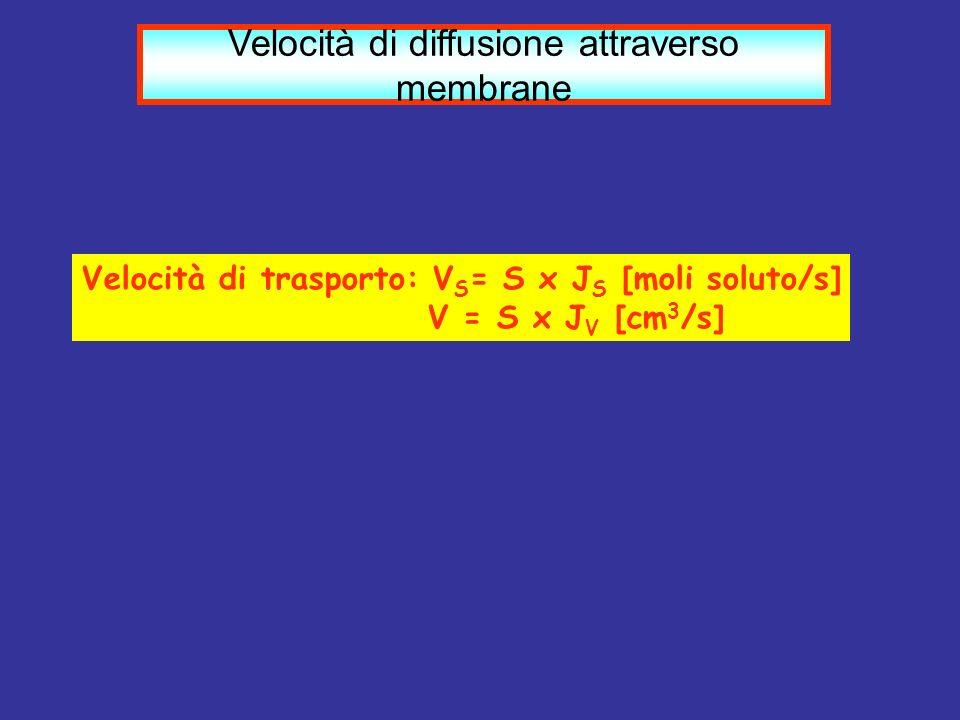 Velocità di diffusione attraverso membrane