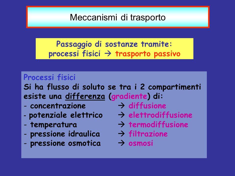 Passaggio di sostanze tramite: processi fisici  trasporto passivo