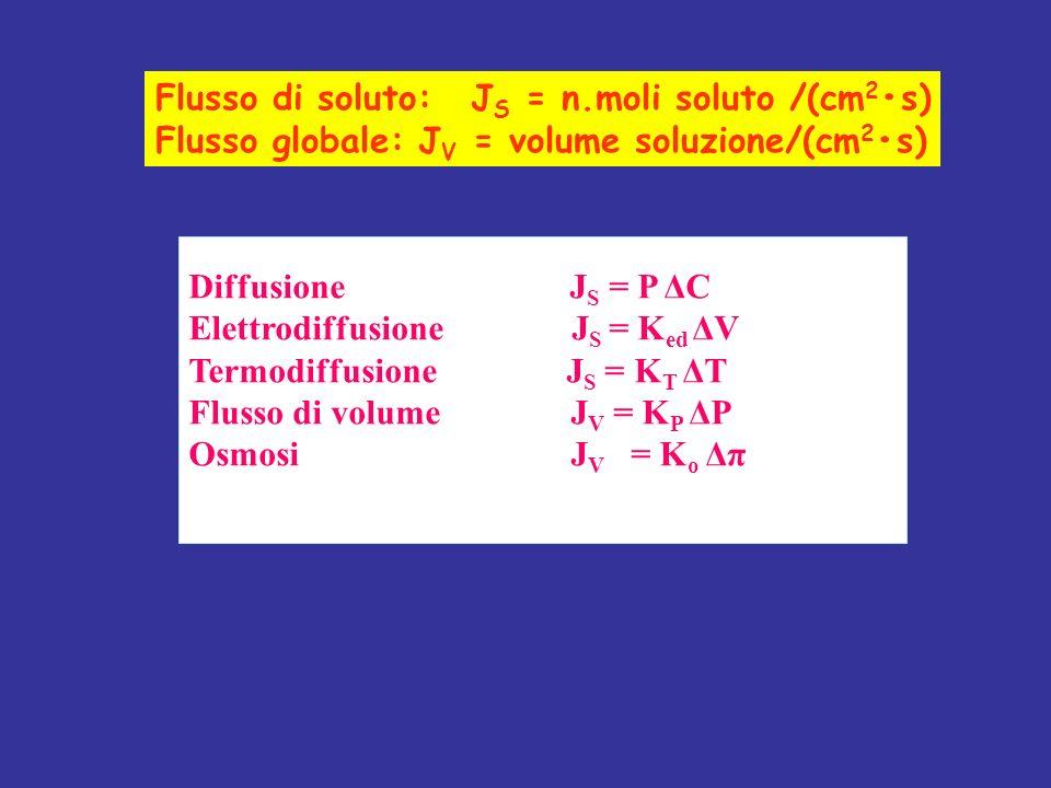 Flusso di soluto: JS = n.moli soluto /(cm2•s)