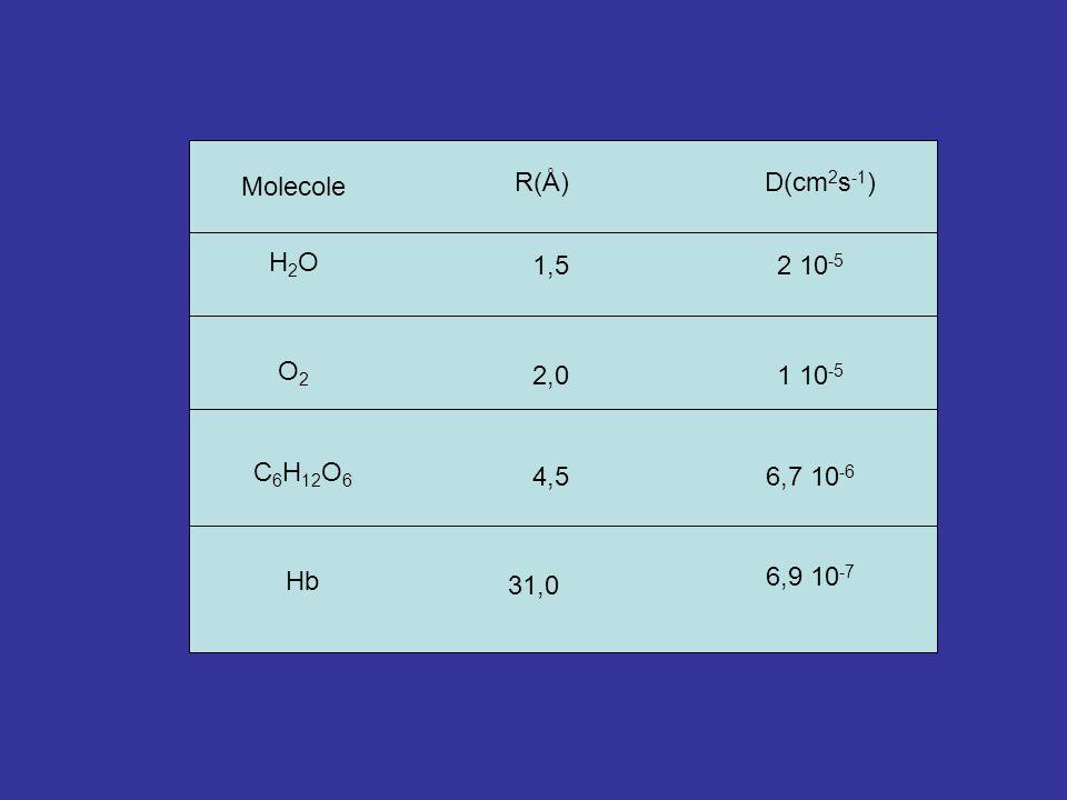 R(Å) D(cm2s-1) Molecole H2O 1,5 2 10-5 O2 2,0 1 10-5 C6H12O6 4,5 6,7 10-6 6,9 10-7 Hb 31,0