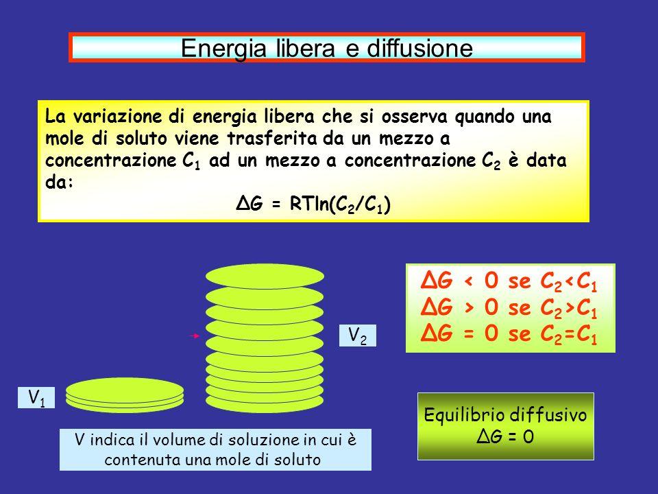 Energia libera e diffusione