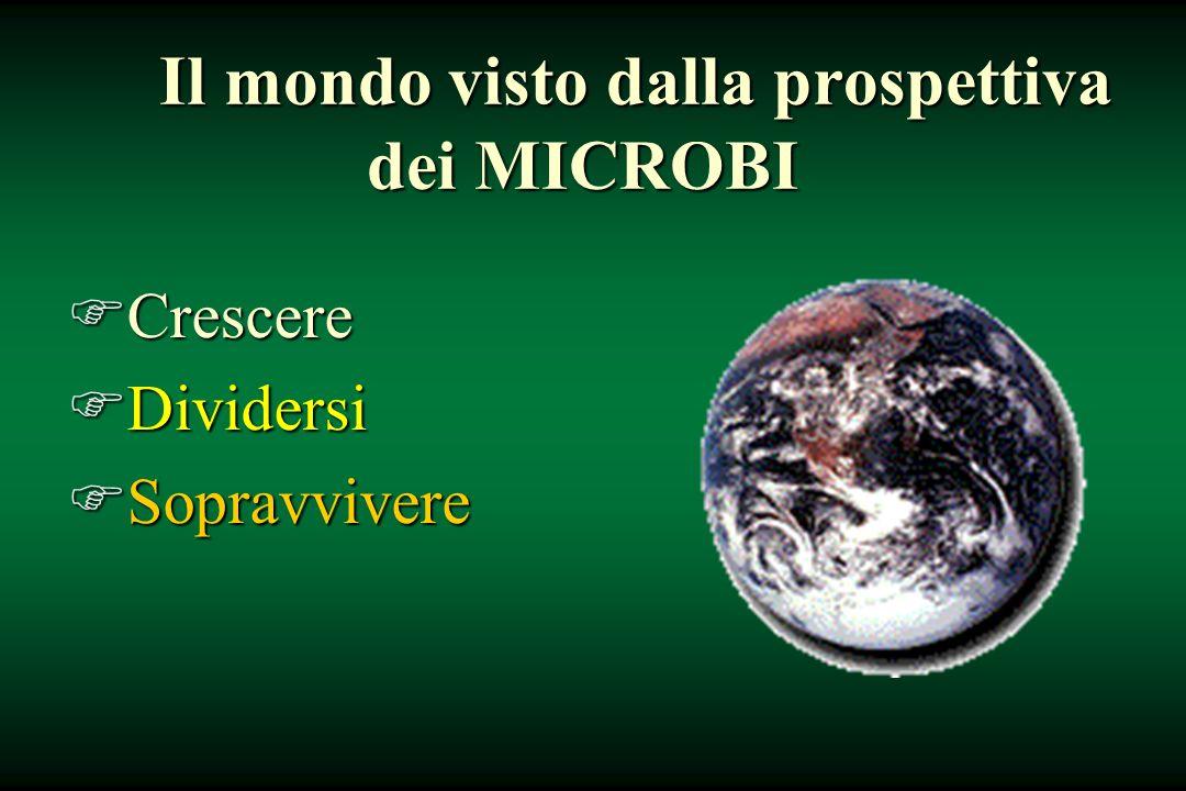 Il mondo visto dalla prospettiva dei MICROBI