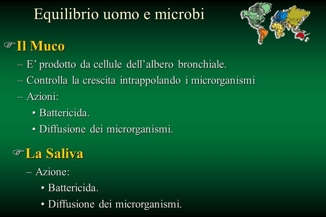 Equilibrio uomo e microbi
