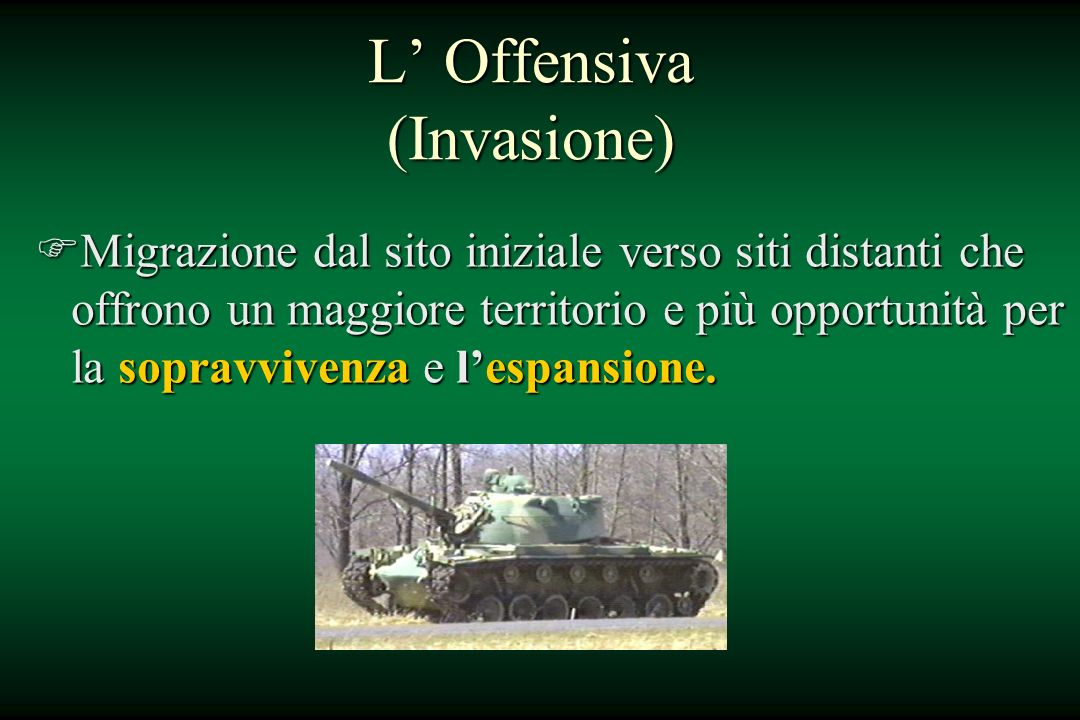 L' Offensiva (Invasione)