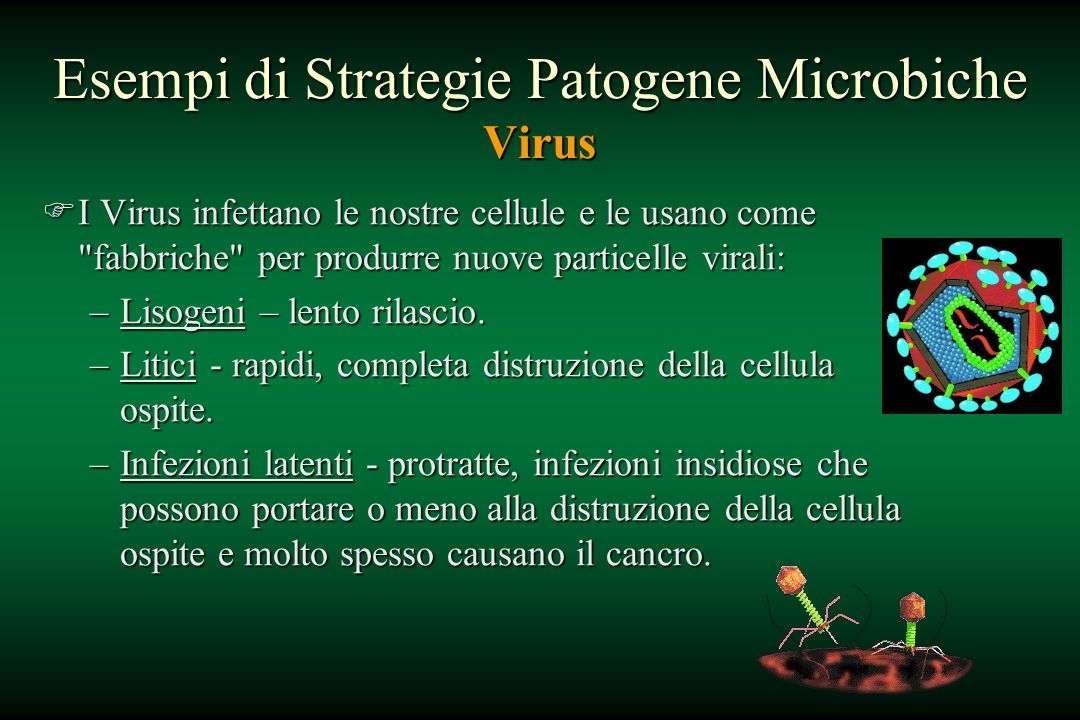 Esempi di Strategie Patogene Microbiche Virus