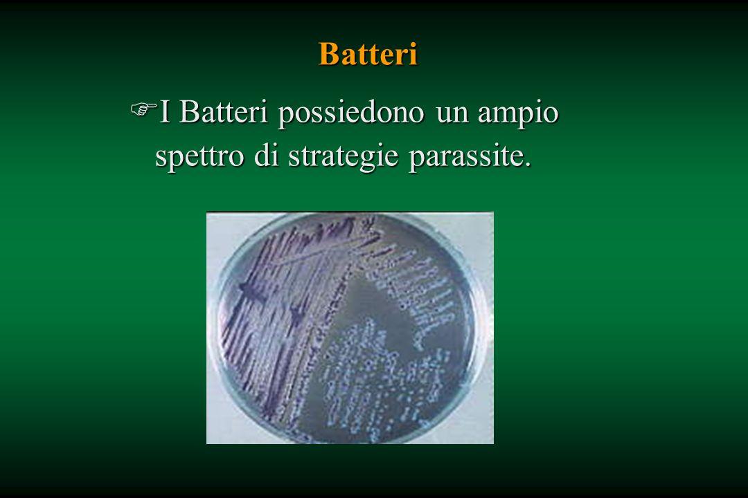 I Batteri possiedono un ampio spettro di strategie parassite.