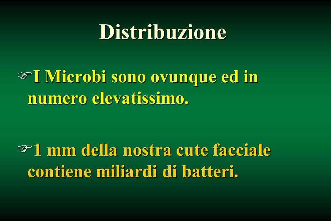 Distribuzione I Microbi sono ovunque ed in numero elevatissimo.