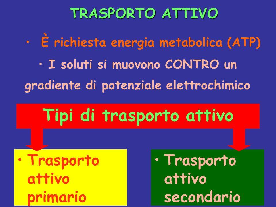 Tipi di trasporto attivo