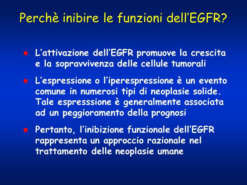 Perchè inibire le funzioni dell'EGFR