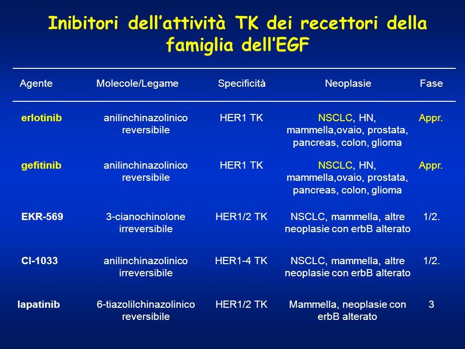 Inibitori dell'attività TK dei recettori della famiglia dell'EGF