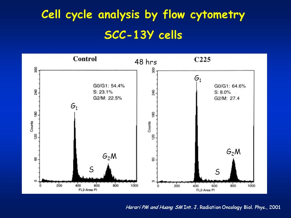 Cell cycle analysis by flow cytometry