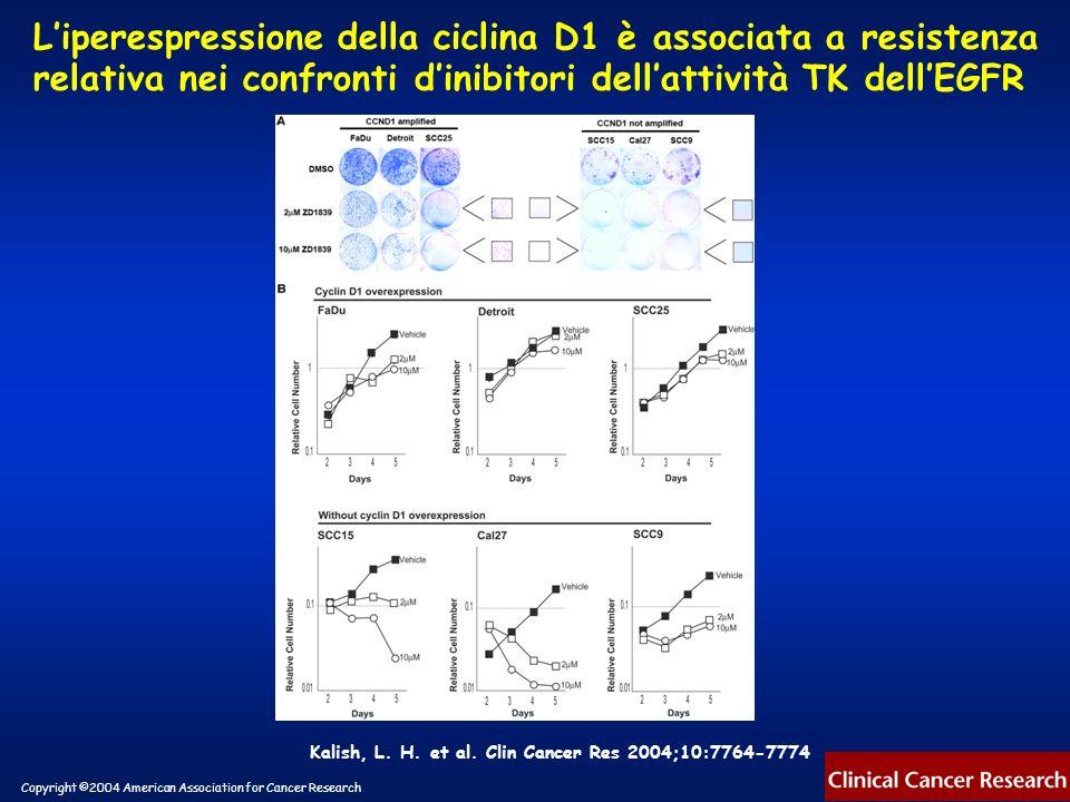L'iperespressione della ciclina D1 è associata a resistenza relativa nei confronti d'inibitori dell'attività TK dell'EGFR