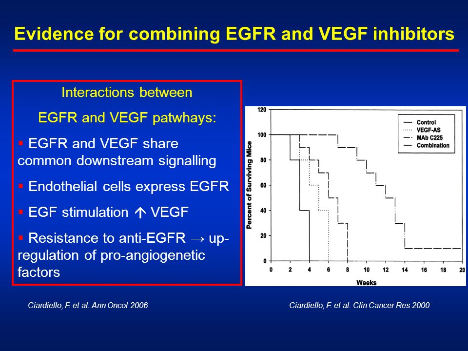 EGFR and VEGF patwhays: