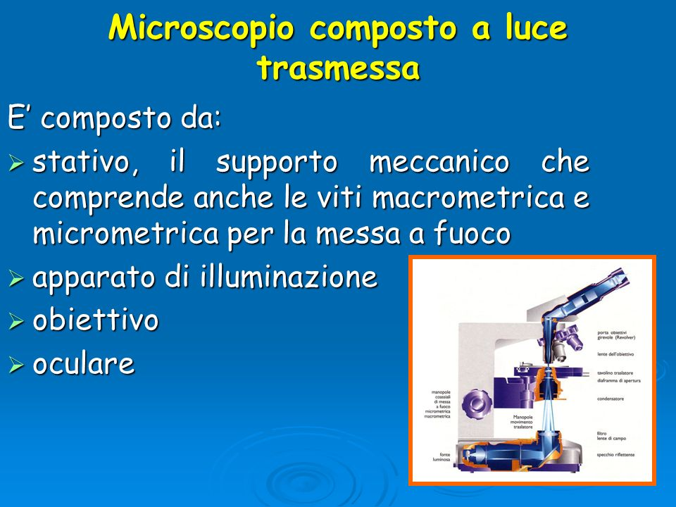 Microscopio composto a luce trasmessa