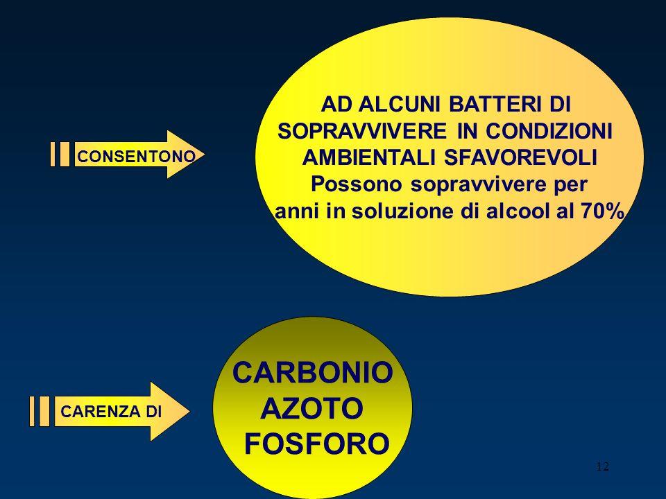 CARBONIO AZOTO FOSFORO