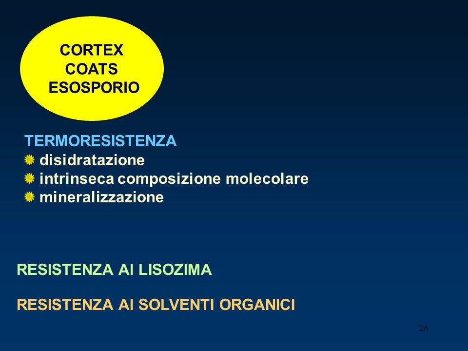 CORTEX COATS. ESOSPORIO. TERMORESISTENZA. disidratazione. intrinseca composizione molecolare. mineralizzazione.