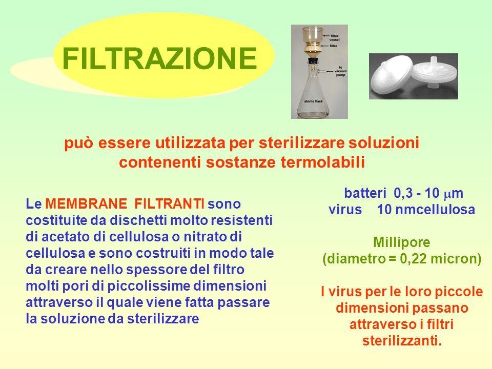 FILTRAZIONE può essere utilizzata per sterilizzare soluzioni contenenti sostanze termolabili. batteri 0,3 - 10 m.