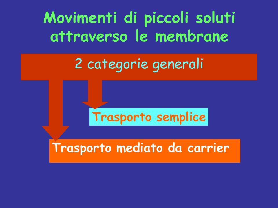 Movimenti di piccoli soluti attraverso le membrane