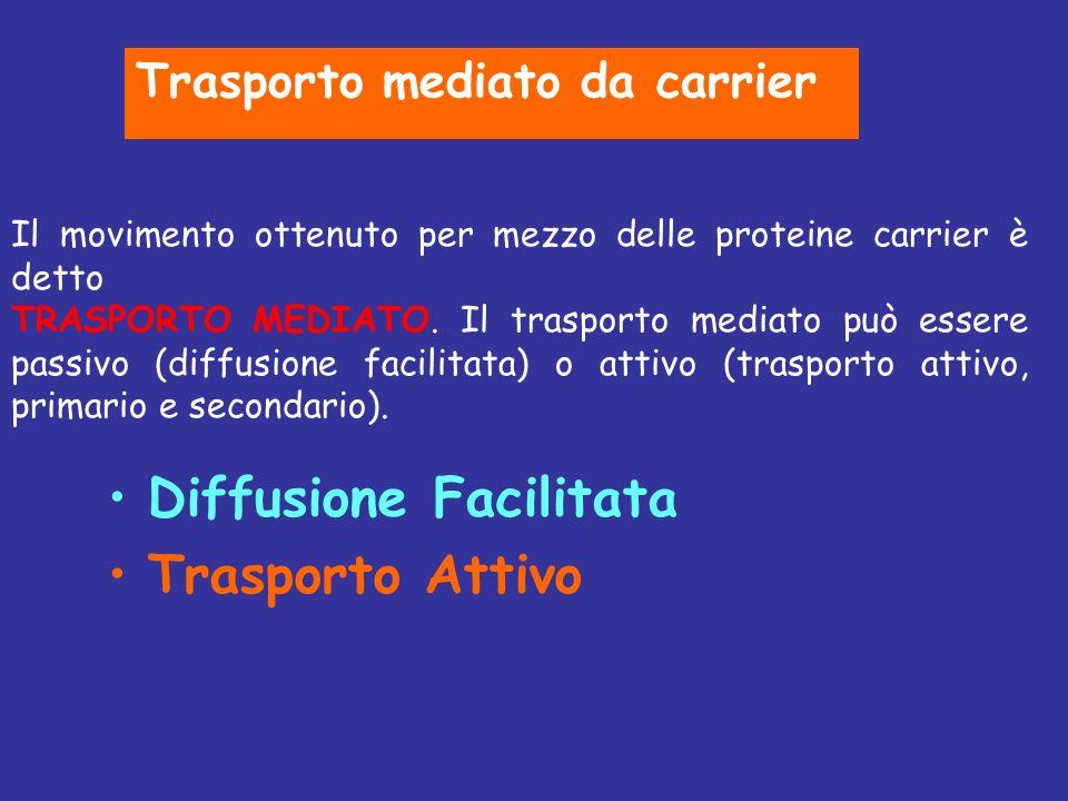 Diffusione Facilitata Trasporto Attivo