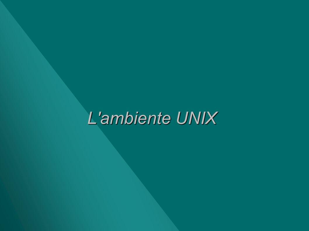 L ambiente UNIX