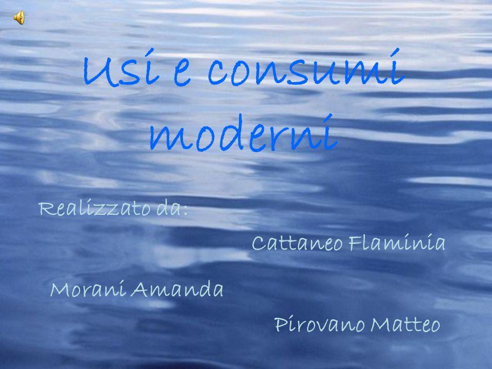 Usi e consumi moderni Realizzato da: Cattaneo Flaminia Morani Amanda