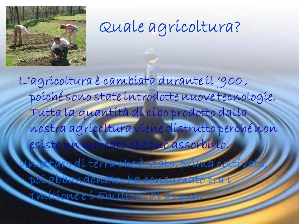 Quale agricoltura