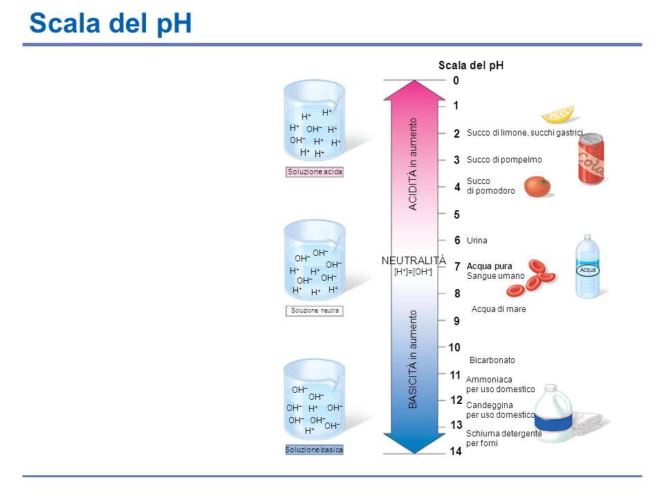 Scala del pH Scala del pH 1 2 3 4 5 6 7 8 9 10 11 12 13 14