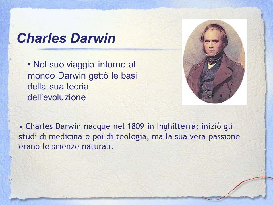 Charles Darwin Nel suo viaggio intorno al mondo Darwin gettò le basi della sua teoria dell'evoluzione.